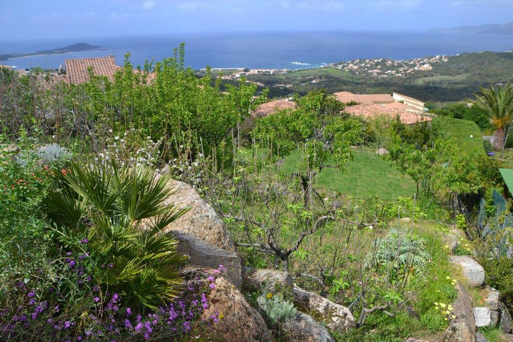 Villa Sole Rossu jardin_1000_666
